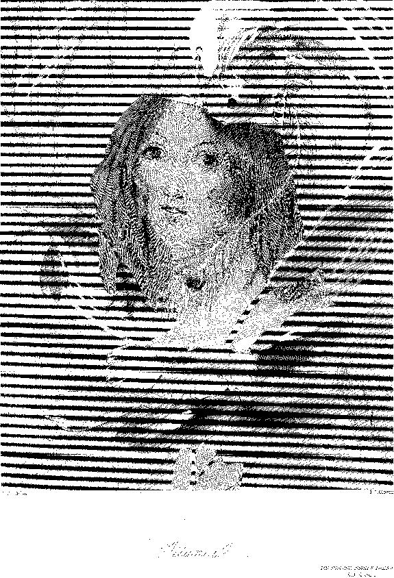 [ocr errors][ocr errors][ocr errors][ocr errors][ocr errors][merged small][merged small][merged small][merged small]