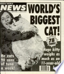 6 Apr 1993